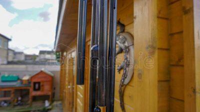 Kilkenny-Log-Cabin-10