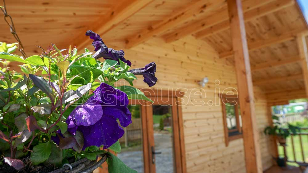 Loghouse Residential Log Cabins Ireland - One Bed Type D